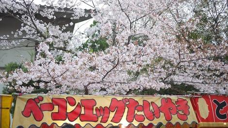 Taiyaki28