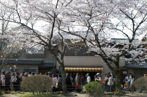 Tetsugaku40