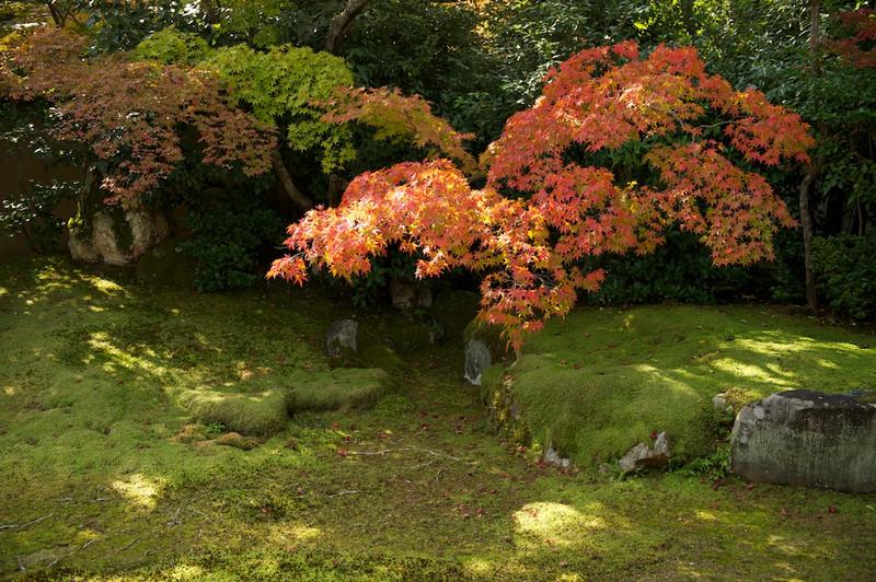 Seiryouji01