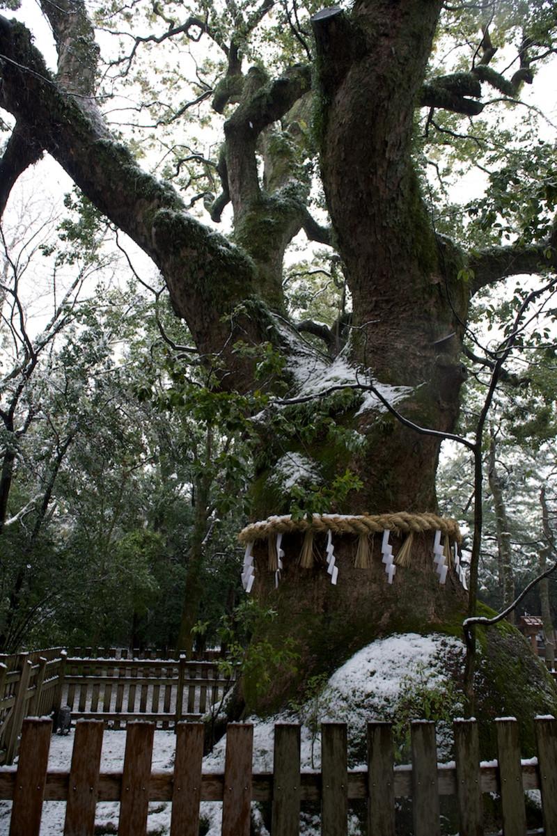 Snowatsuta14
