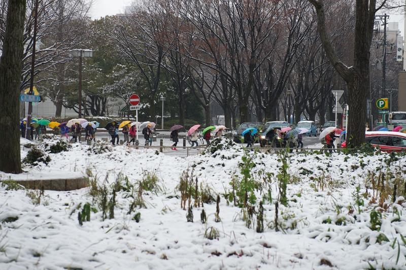 Snowosu27