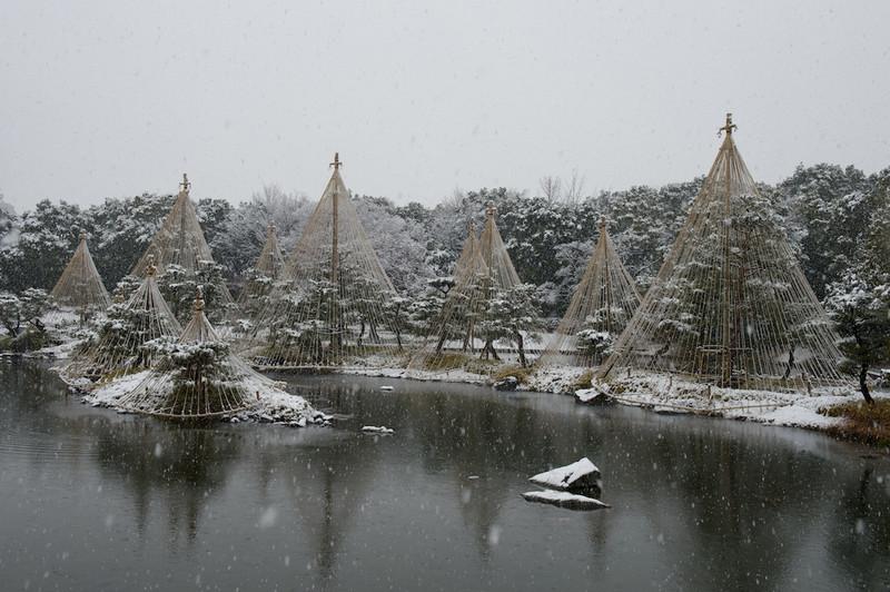 Snowshirotori12