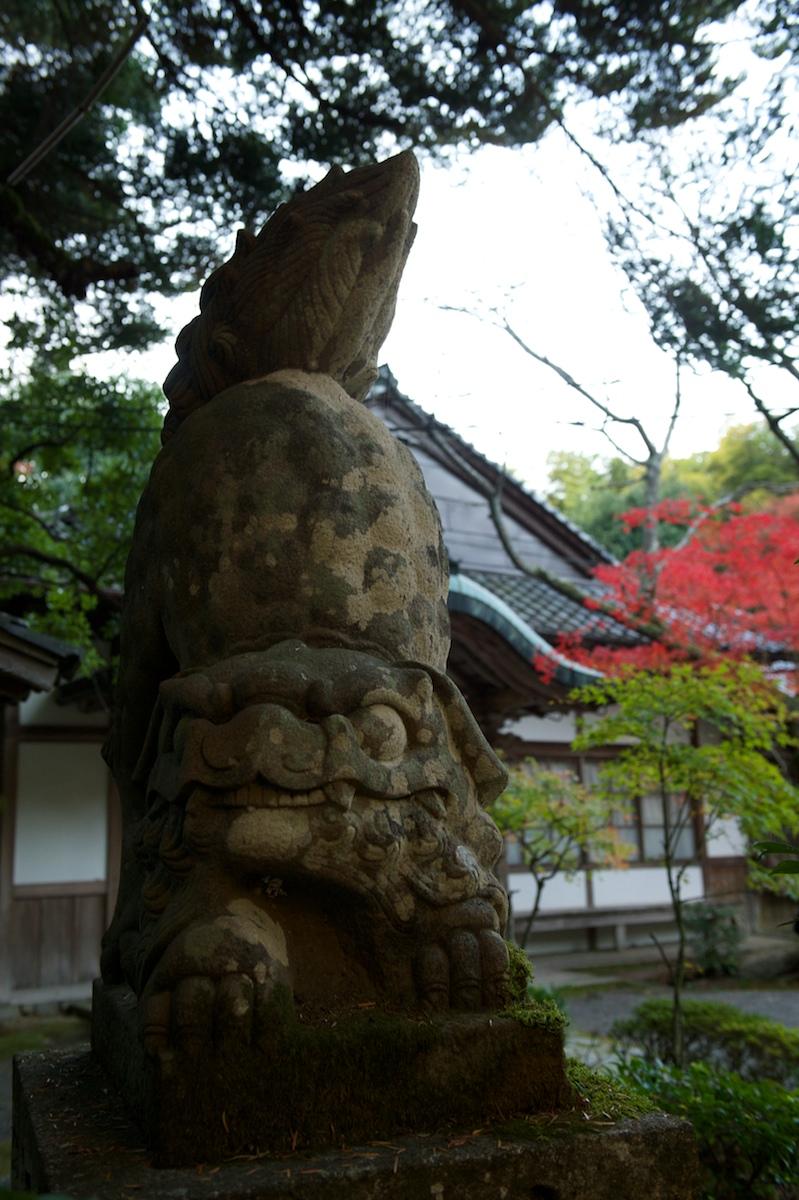 Akayamamyoujin44